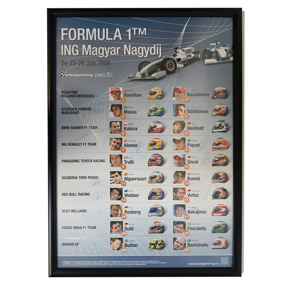 Product image for F1   Hungarian Grand Prix - 2009 - Budapest   original poster   signed entire 2009 grid